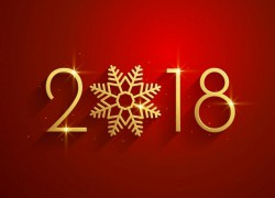 Режим работы площадки в новогодние праздники